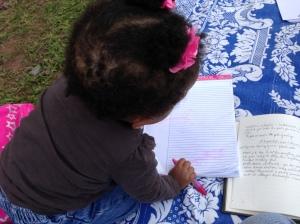 Safiyya's notes in Anse Tamara's tablet.